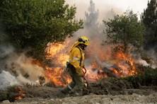 Bombeiros espanhóis combatem fogo com fogo em Pampilhosa da Serra