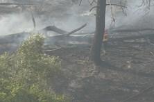 Incêndio obriga a evacuar lar de idosos no Cacém