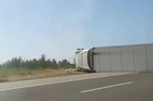 Despiste de pesado de mercadorias na A1 faz um ferido grave