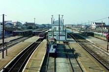 Sexagenário morre trucidado por comboio