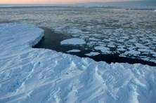 Alterações climáticas podem deixar um quarto da Antártida sem gelo em 2100