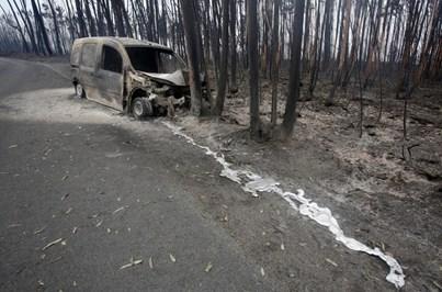 O rasto de morte e destruição que o fogo deixou