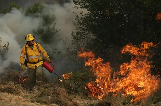 Vieira do Minho contrata desempregados para prevenção e combate aos fogos