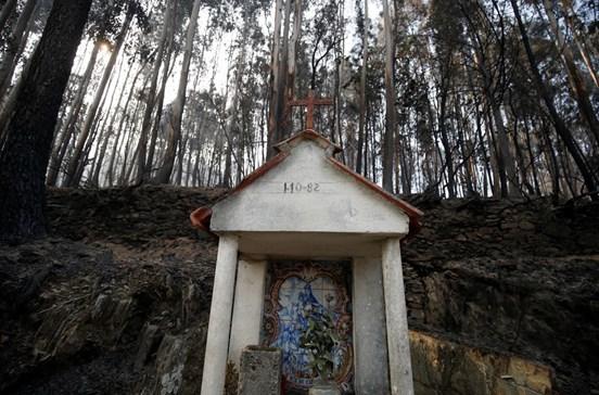Cadafaz, a aldeia onde até os mortos combateram o fogo