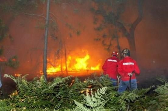 Cerca de 70 pessoas retiradas de casas devido a incêndio em Gavião