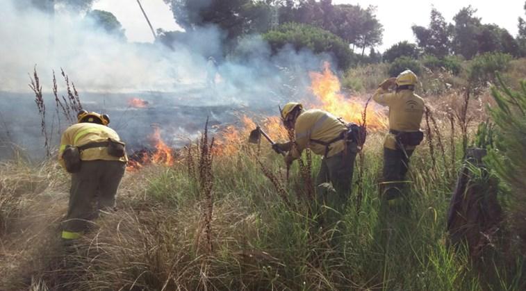 Resultado de imagem para Incêndio no sul de Espanha corta várias estradas e isola 50.000 pessoas
