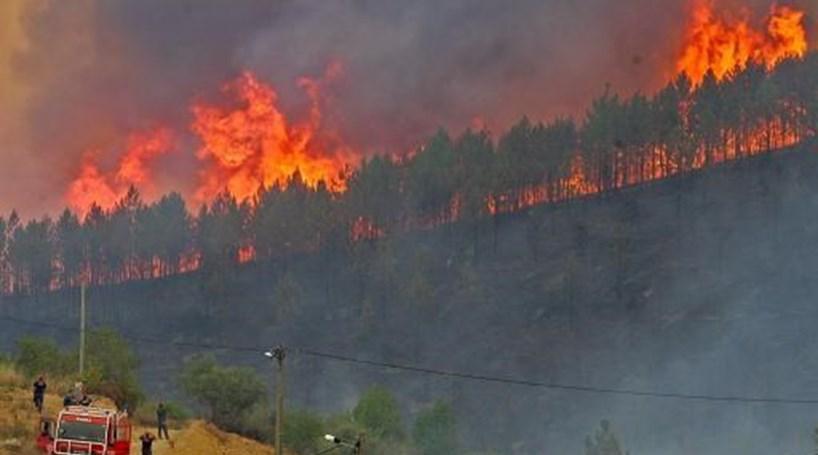 Evacuada aldeia de Vale Pereiras em Pampilhosa da Serra