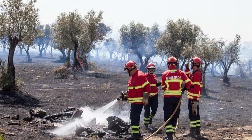 Dominado fogo que lavrava na zona de Évora