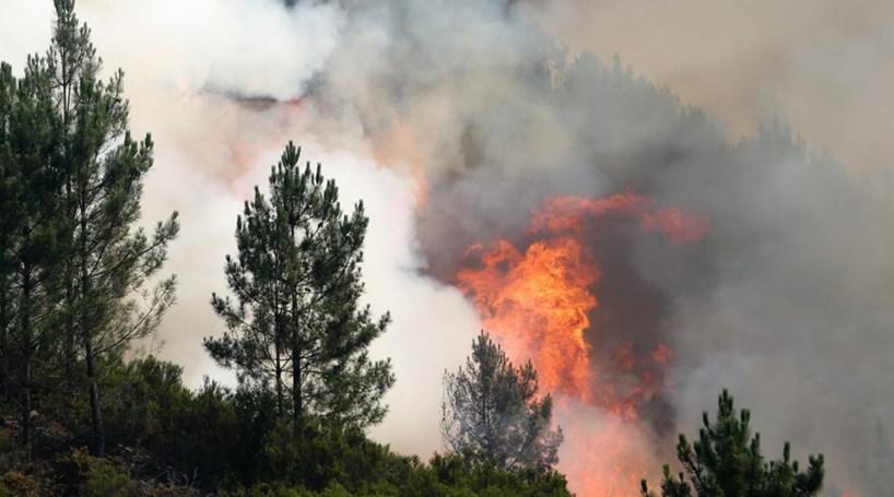 """PCP avisa que """"incêndios não se apagam com gasolina"""""""