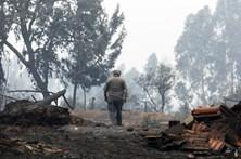 Proteção Civil desconhece outras vítimas em Pedrógão Grande