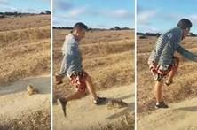 Procurado jovem que chutou um coelho e gritou