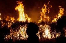Segunda vaga de incêndios queimou 28 mil hectares
