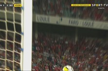 Seferovic veio para o Benfica para marcar