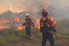 Arderam mais de 75 mil hectares este ano, a maior área da última década