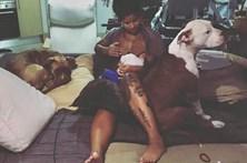 Blaya amamenta filha bebé com pit bulls ao lado