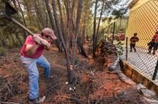 População de Proença-a-Nova, junta-se aos bombeiros no combate aos fogos