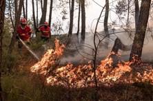 Fogo na Sertã mobiliza mais de mil operacionais