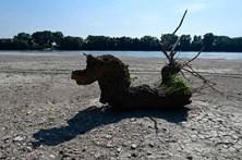 Itália enfrenta uma das piores secas das últimas décadas