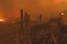 Fogo cerca aldeia de Gardete em Vila Velha de Ródão