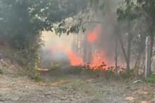 Incêndio em Penacova