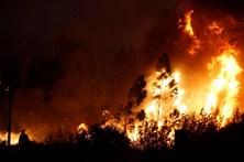 Mais de 50 concelhos do continente em risco 'máximo' de incêndio