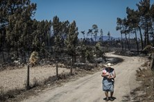 Fogo consome várias casas devolutas em Louriceira