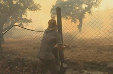 Vários habitantes de Nisa ajudam bombeiros no combate às chamas