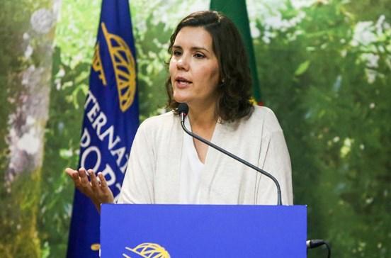 """Moção de censura foi """"decisão tomada por unanimidade"""", garante Cristas"""