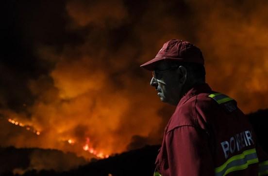 Incêndios custam mil milhões por ano, prevenção custaria 165 milhões