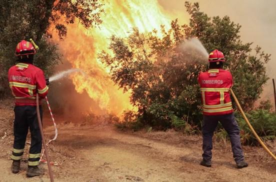 Detida doméstica por atear incêndio que ainda lavra em Vila Velha de Ródão