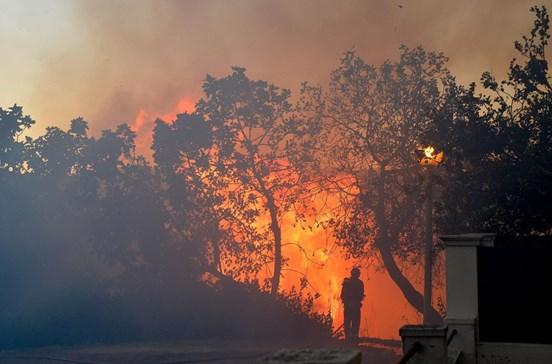 Incêndio de Setúbal reacendeu-se