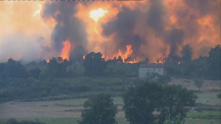 Três fogos em Mangualde mobilizam 300 bombeiros