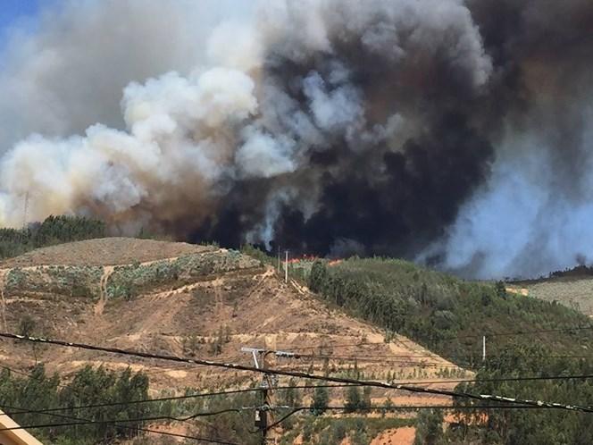 Mais de 500 operacionais combatem fogo na Sertã