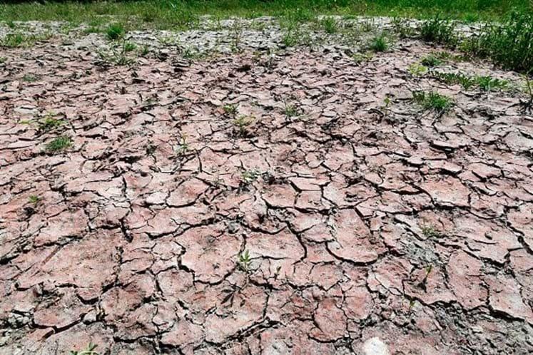 Vaticano solidário com a seca sentida em Roma