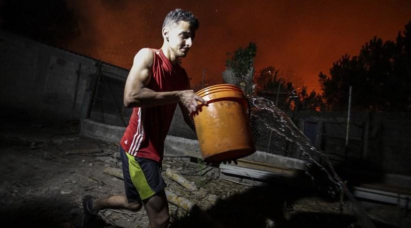 Vários agricultores perderam tudo no incêndio de Alijó