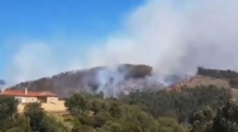 Fogo em Coimbra combatido por 300 bombeiros
