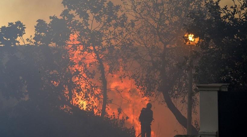 Resultado de imagem para Setúbal: Bairros evacuados. Fogo ameaça habitações