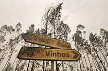 Marcelo e Costa voltam a Pedrógão, dois meses após os incêndios