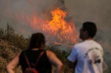 Fogo em Mação continua a cortar duas estradas nacionais