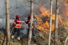 Cinco concelhos do distrito de Faro em risco elevado de incêndio