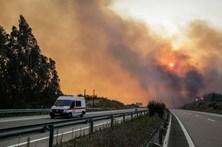 Quatro principais fogos lavram em Santarém, Castelo Branco, Vila Real e Coimbra