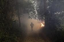 Fogo destruiu seis mil hectares em Cantanhede sem danos pessoais