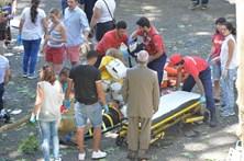 Corpos das vítimas da Madeira depositados em contentor