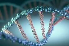 Cientistas criam teste sanguíneo para deteção precoce de cancros a partir de ADN