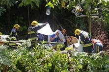 Autarca do Funchal falta a comissão de inquérito sobre tragédia que matou 13 pessoas