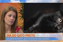 Dia do gato preto
