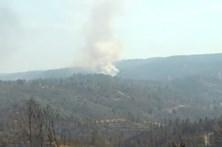 Mais de mil operacionais combatem chamas em Mação e Gavião