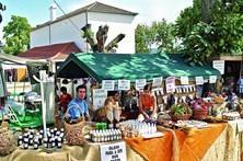 Festival junta o culto e a medicina popular