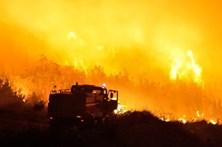 Dezenas de incêndios estão a destruir a costa Adriática da Croácia
