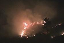 Vila Real, Bragança, Guarda e Castelo Branco em risco máximo de incêndio